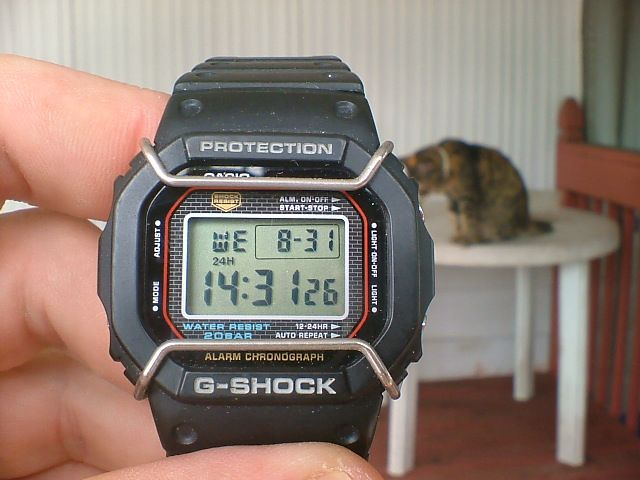 Click image for larger version.  Name:DW-5000-1-watches-1314822718.jpg Views:128 Size:47.6 KB ID:9995